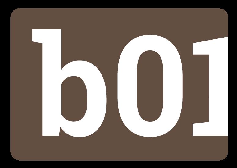 binaer-logo-icon.png